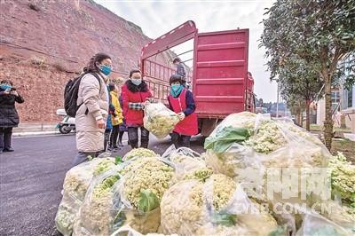 资阳南津镇最新规划图